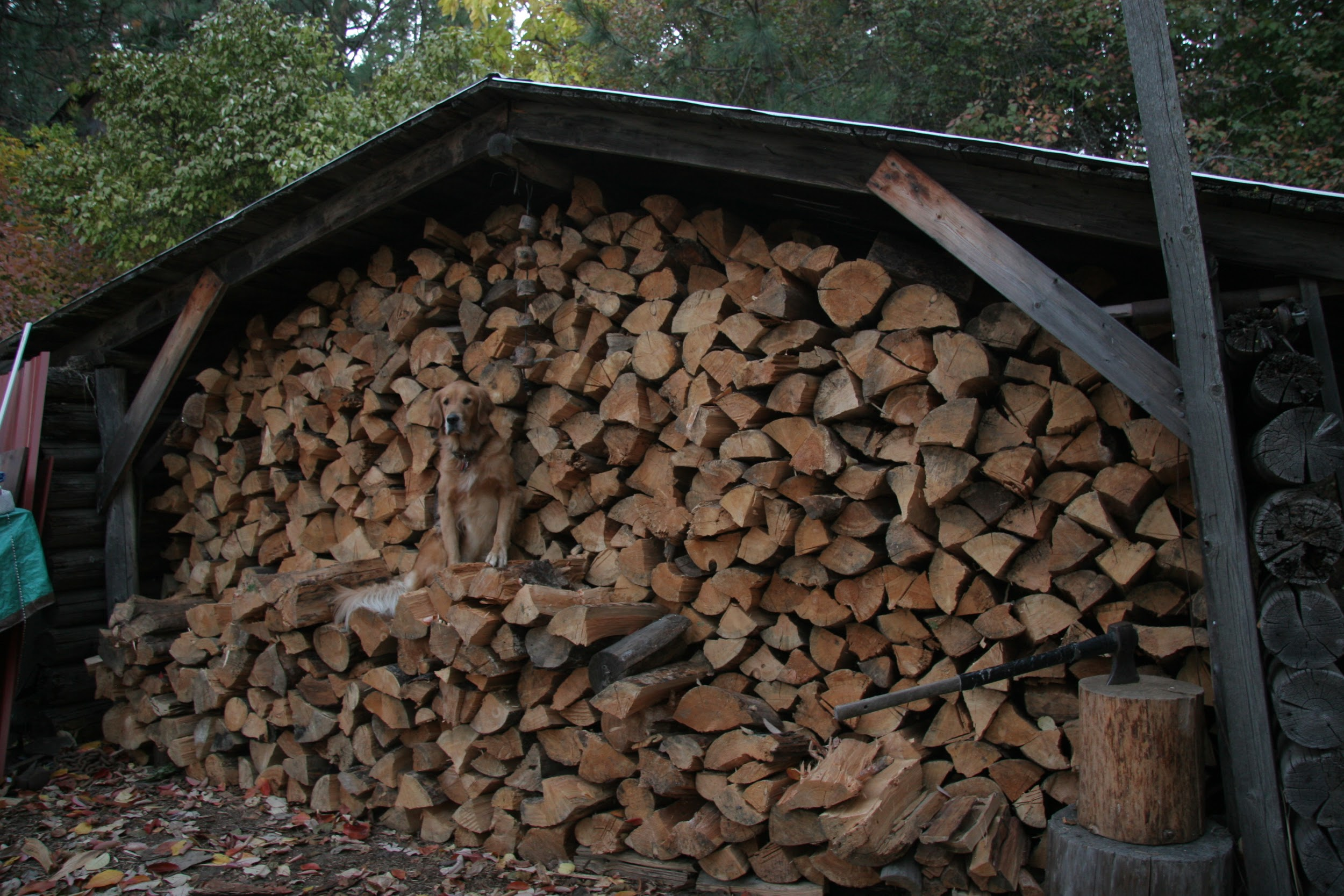 Wood Stove Shed 02