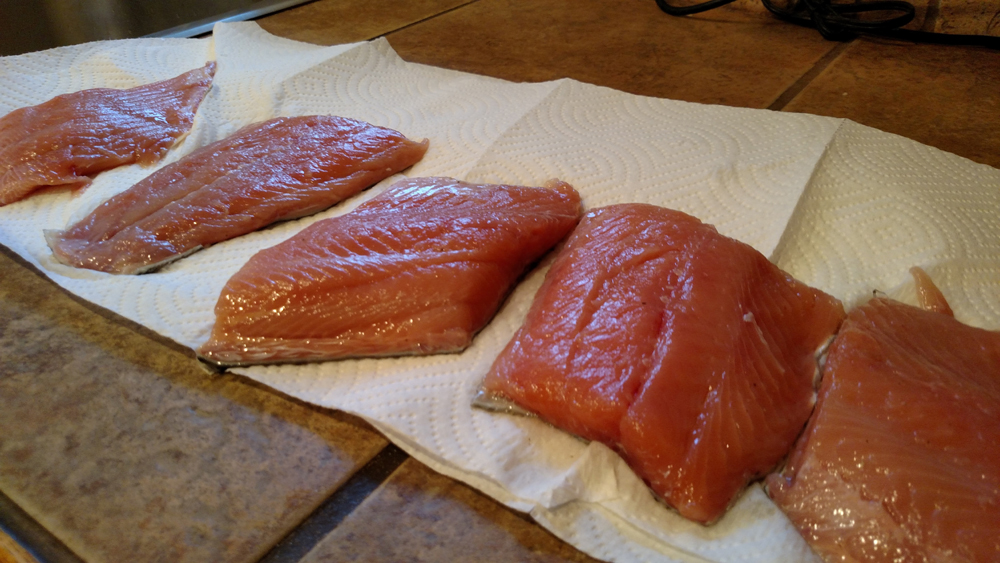 Steelhead brined and patted dry